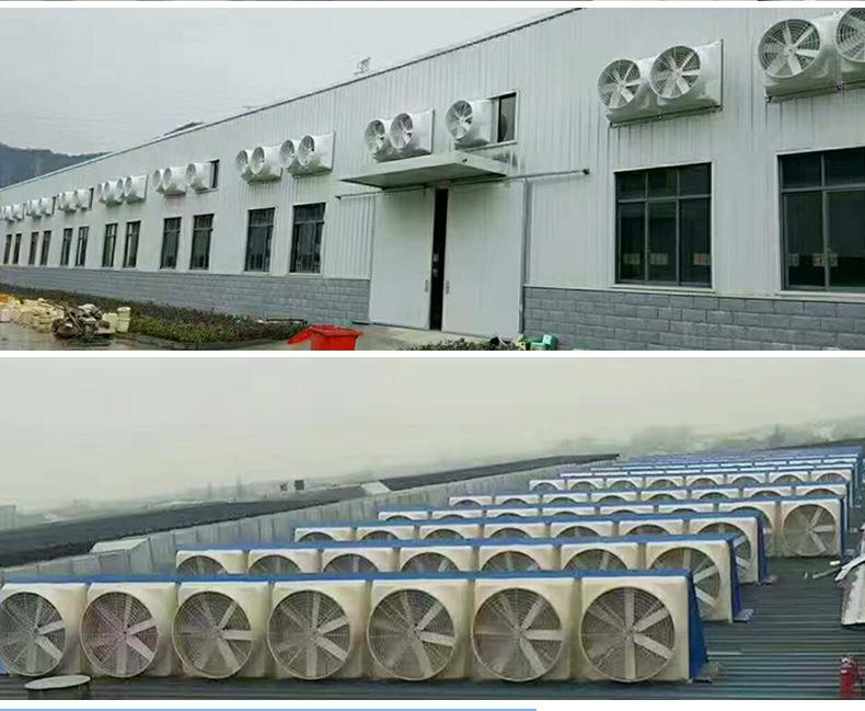 负压风机+降温湿帘系统=猪场环境控制的新型降温系统